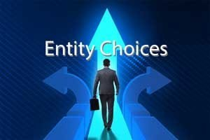 choosing-right-business-entity