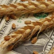 """It's Time to """"Harvest"""" Investment Losses"""